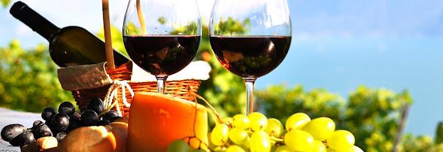 Circuito del vino Guanajuato