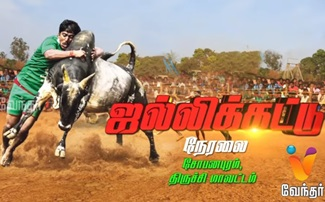 Jallikattu | Vendhar Tv