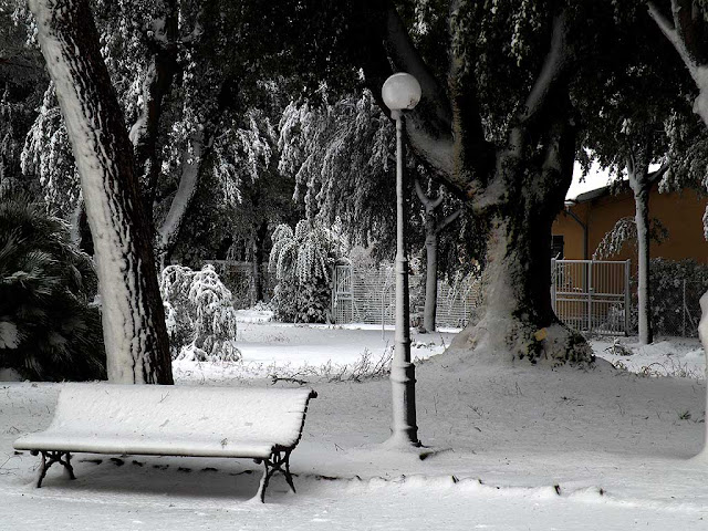 Park of Villa Letizia under the snow, Livorno