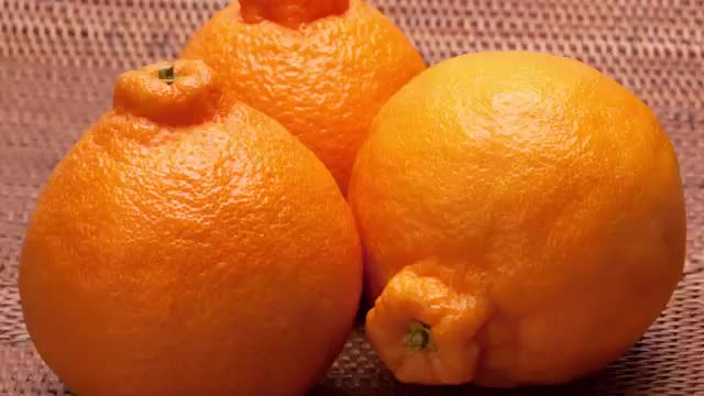 12 Most Expensive Fruits in the World, Dekopon Citrus