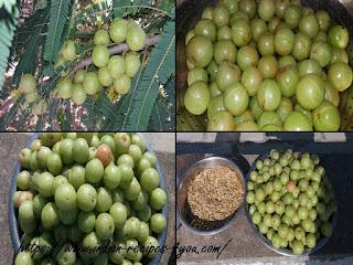 Gooseberry Wine recipe in hindi by aju