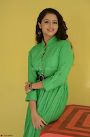 Geethanjali in Green Dress at Mixture Potlam Movie Pressmeet March 2017 021.JPG