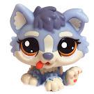 Littlest Pet Shop Globes Husky (#1683) Pet