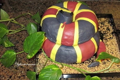 How to Decorate A Snake Cake