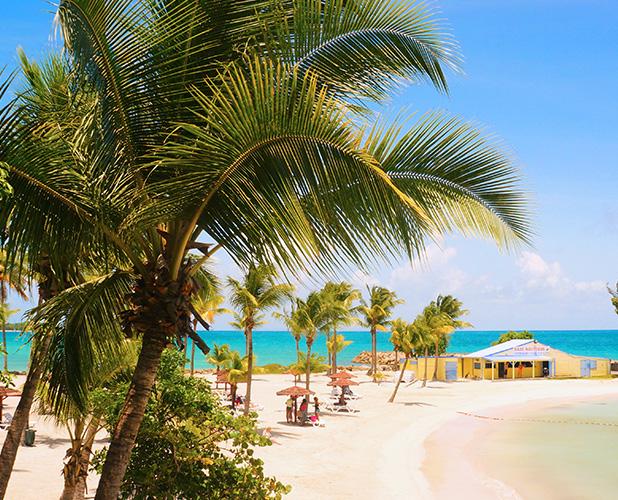 Plage du Gosier en Guadeloupe , sable doré et cocotier
