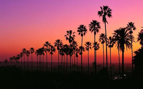 Los Angeles Sunset | Mobile Wallpaper