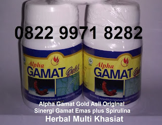 Jual manfaat khasiat alpha gamat gold spirulina sinergis Asli BPOM