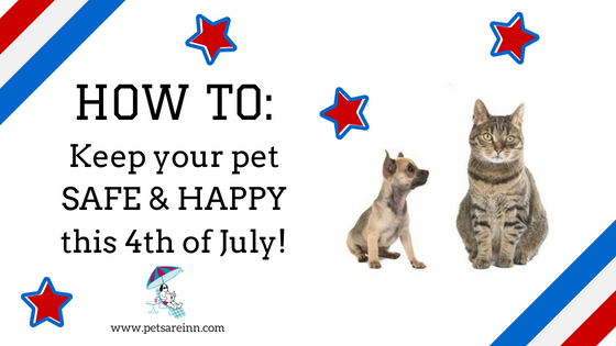 4th of July pet safe