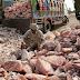Nutricionista quebra o silêncio e revela toda a verdade sobre o ''Sal rosa/Himalaia'' que não estão te contando