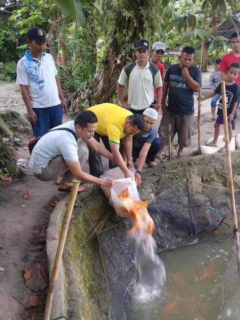 Pelepasan ikan emas di kolam oleh ketua DPD IKP Asahan.