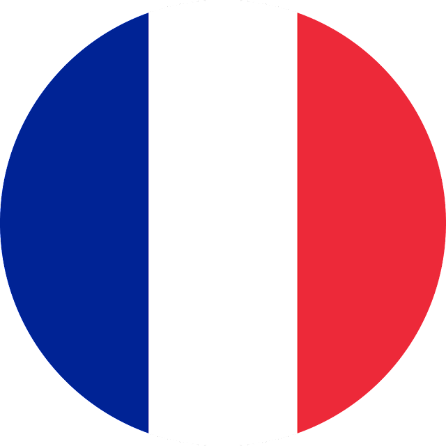 download france flag svg eps png psd ai vector color free #france #logo #flag #svg #eps #psd #ai #vector #color #free #art #vectors #vectorart #icon #logos #icons #flags #photoshop #illustrator #symbol #design #web #shapes #button #frames #buttons #apps #app #science #network