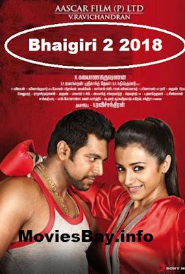 Bhaigiri 2 2018 Hindi Dubbed 720p HDRip 1GB