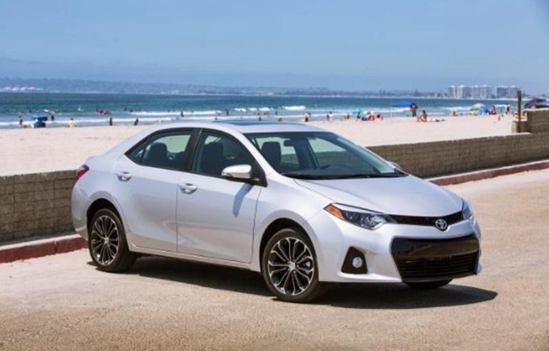 2019 Toyota Corolla Le Plus Models