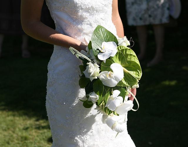 Hoa cưới đẹp nhất thế giới lan hồ điệp