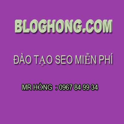 Đào tạo seo miễn phí cho newbi