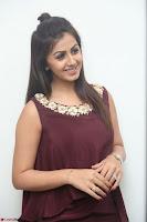 Nikki Galrani in a Brown Shining Sleeveless Gown at Nakshatram music launch ~  Exclusive 097.JPG