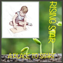 Rising Star Badge at A Place to Start