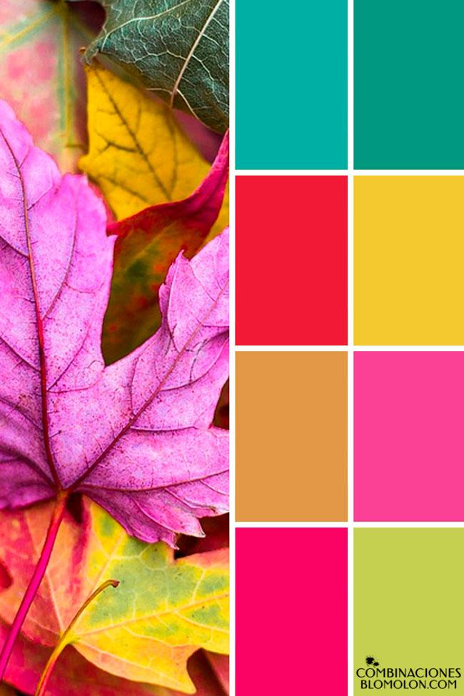 combinacion_de_colores_variedad_6