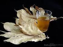 Seperti yang telah disampaikan pada artikel sebelumnya Obat herbal untuk penyakit jantung dari daun sukun