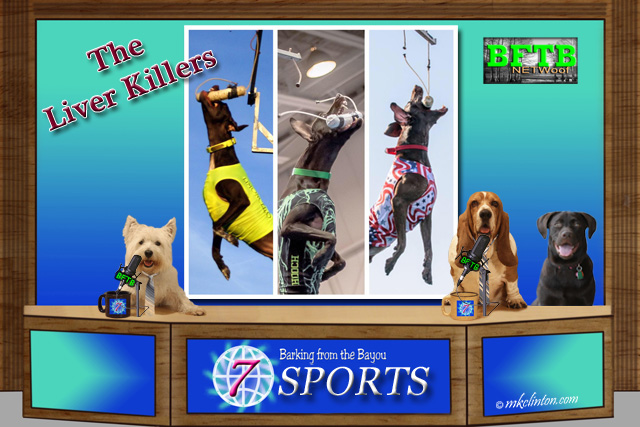 BFTB NETWoof Sports with the Liver Killers Dock Diving Dogs