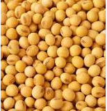 Nutritional contents of soybeans