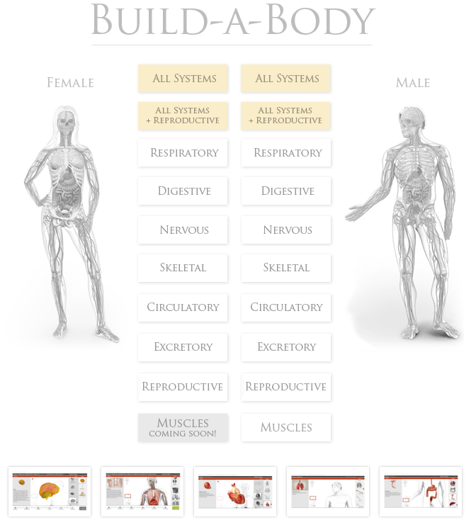 Free Technology For Teachers An Interactive Build A Body Lesson