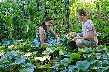 Live green ideas - (familyfinance.in)