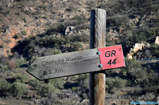 cartel gr - 44