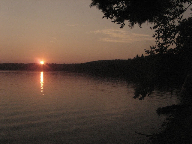 sunset on a lake with pine tree in the foreground
