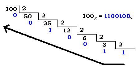 Conceptos básicos de opciones binarias