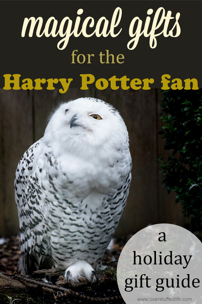 Harry Potter gift guide | Harry Potter gift ideas | gifts for Harry Potter fanatic | Harry Potter fan | what to buy for a Harry Potter lover | Harry Potter book gifts | Harry Potter jewelry | Harry Potter games | unique Harry Potter themed gifts | Harry Potter vacation
