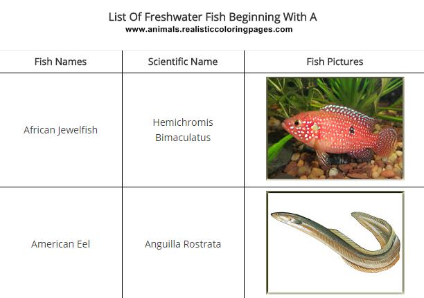 List Of Freshwater Fish Beginning With A