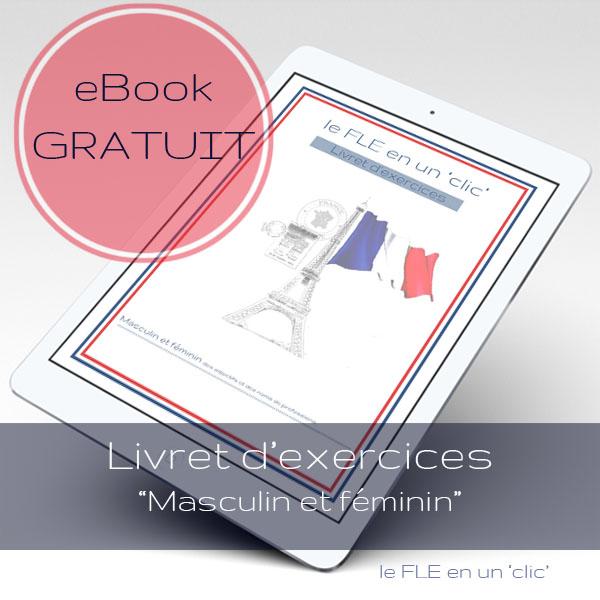 eBook gratuit, Livret d'exercices français, Masculin et féminin des adjectifs et des noms de professions