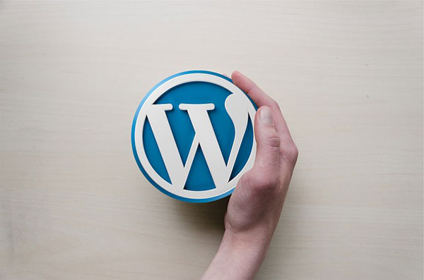 Top 7 Reasons to Use WordPress