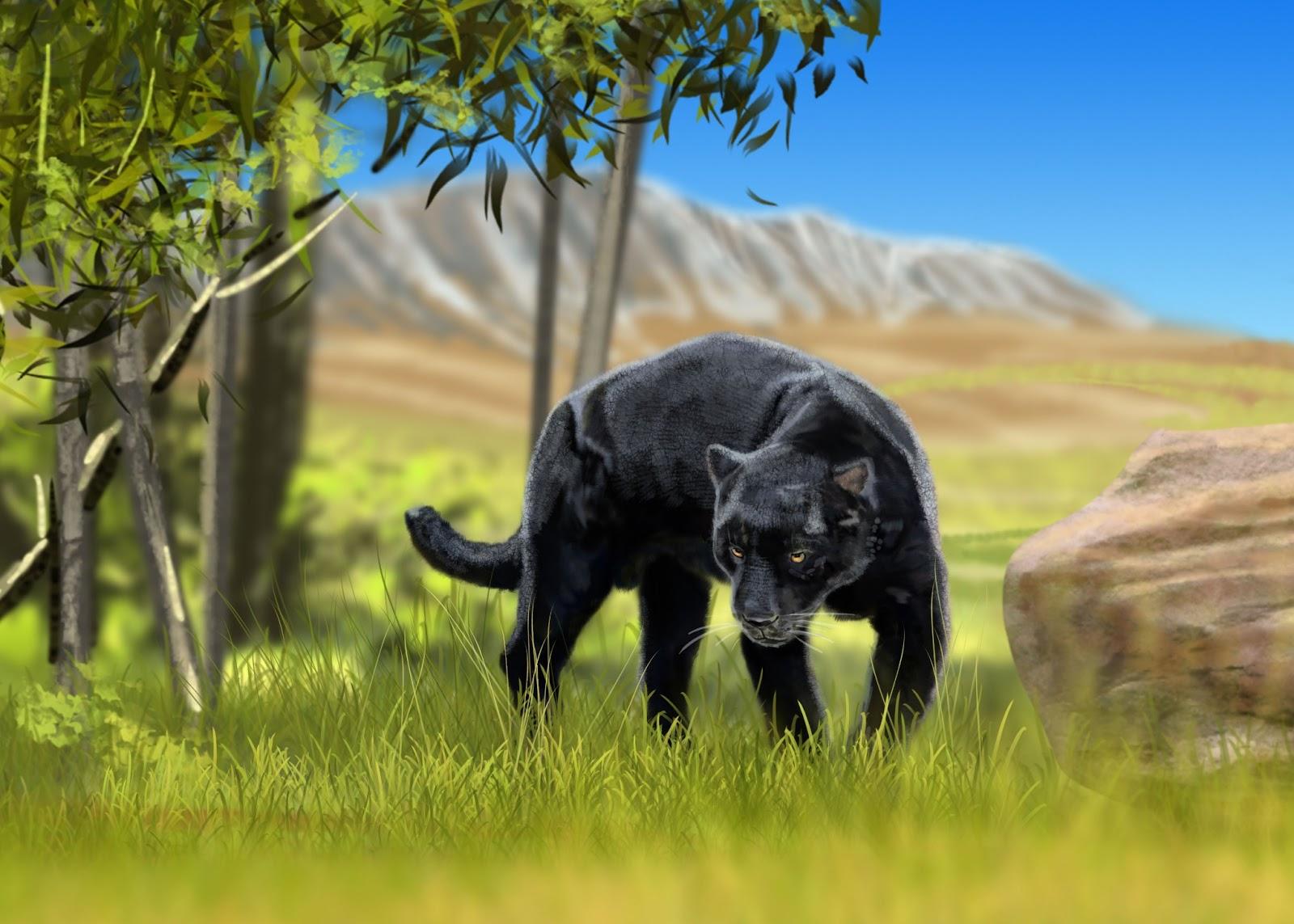 Black Panther Animal Running