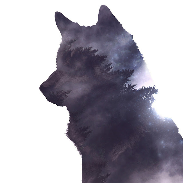 wilka las podświadomość zew natury wewnętrzny dzikus zwierze totemiczne