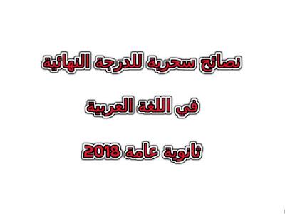 افضل طرق للحصول علي الدرجة النهائية في اللغة العربية