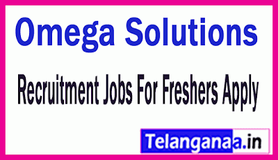 Omega Solutions Recruitment Jobs For Freshers Apply