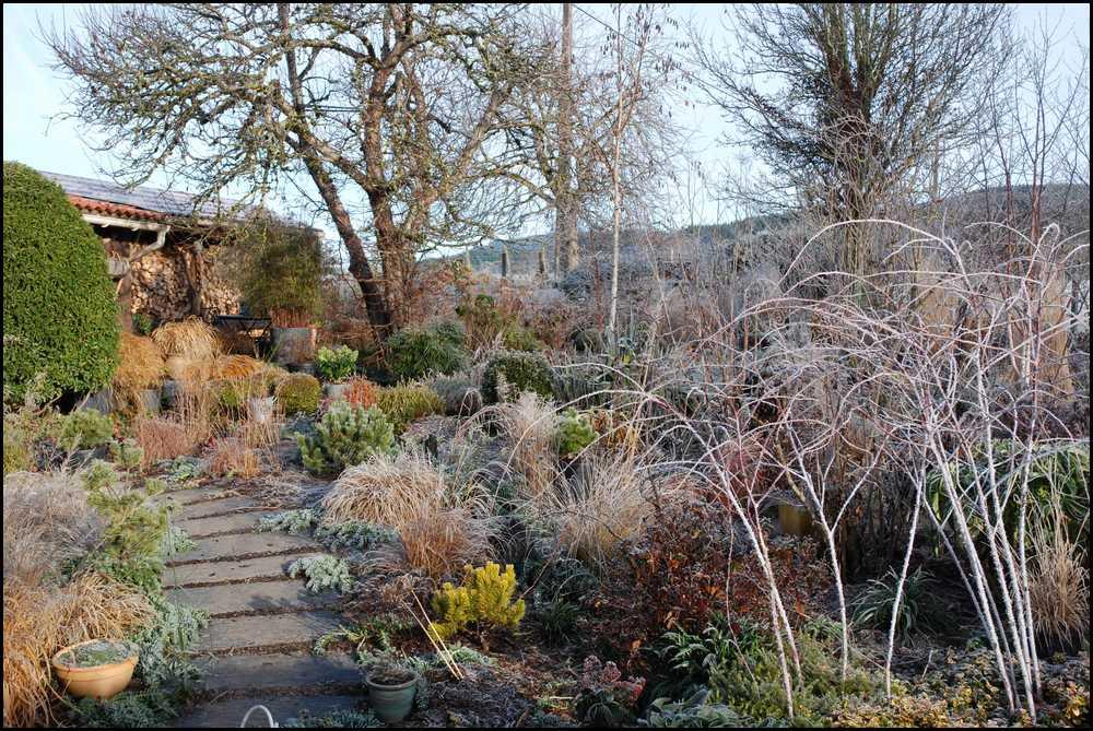Le jardin du mayet un hiver avec un temps hivernal for Le jardin ou l on s attarde