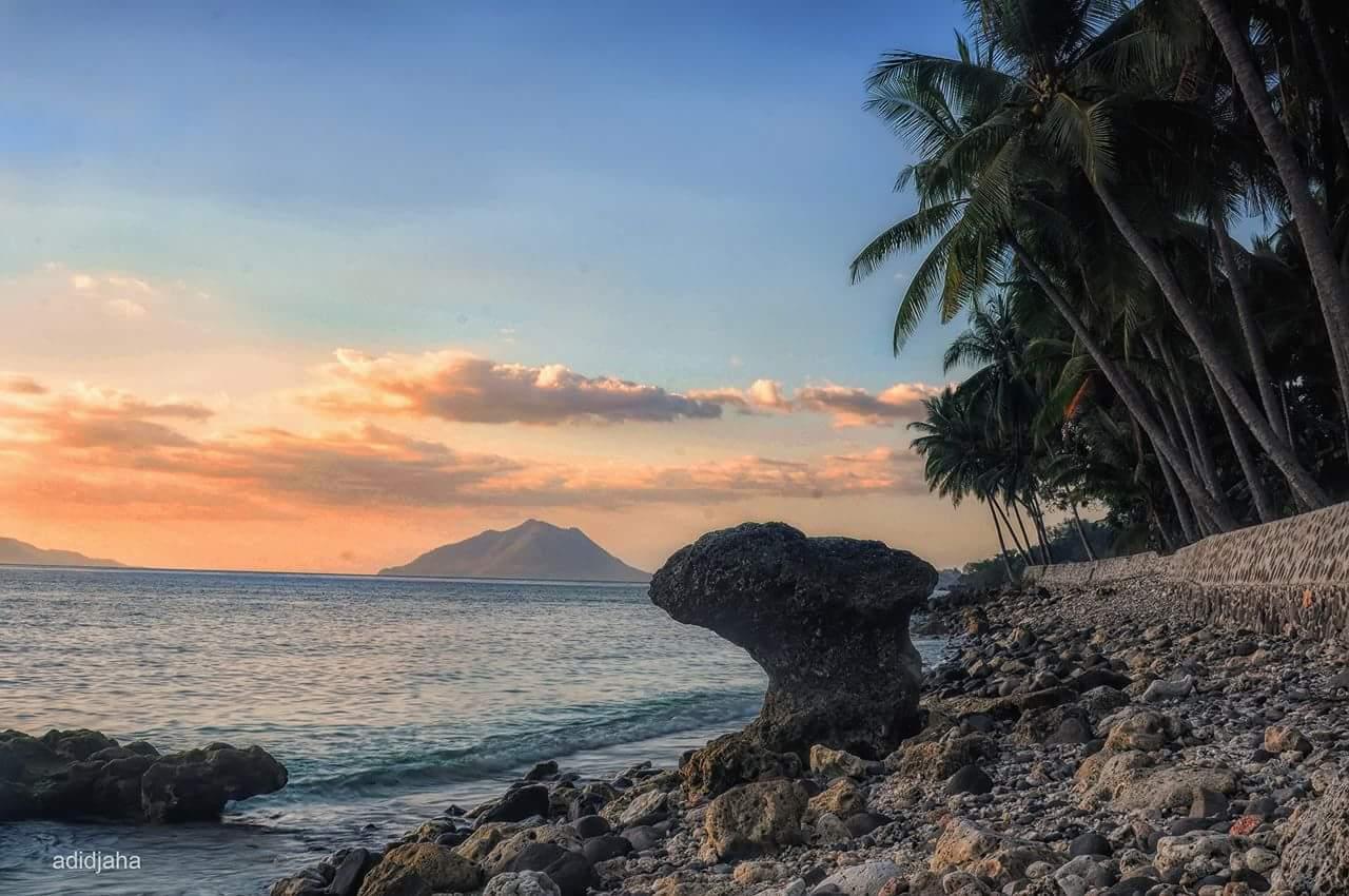 Spot Diving di NTT dan Beberapa Pilihan Wisata Lainnya