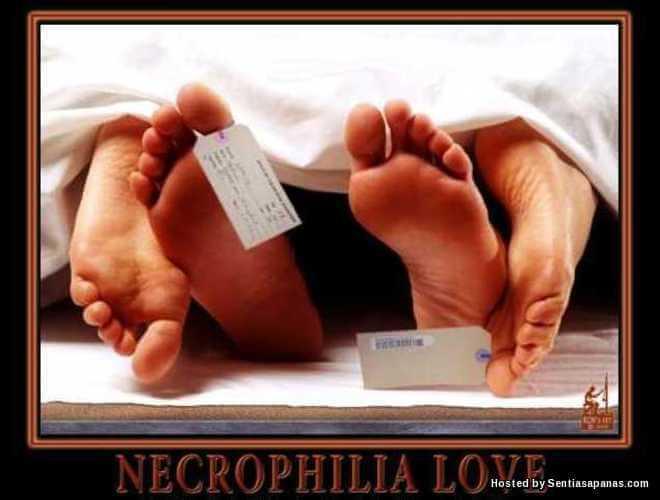 Apa Itu Necrophilia