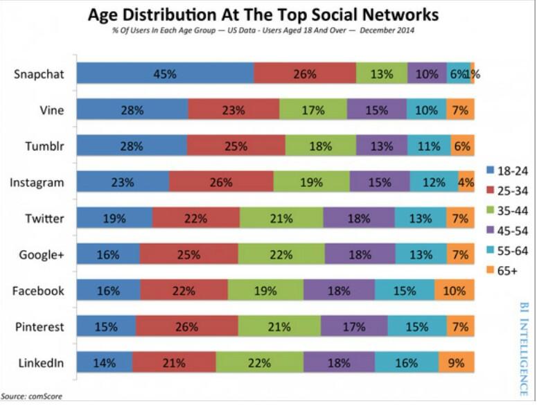 Rincian Demografis untuk Setiap Jejaring Sosial yang Berbeda