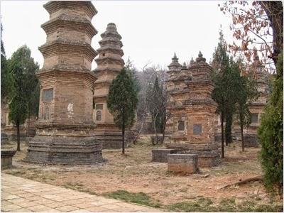 ป่าเจดีย์วัดเส้าหลิน (Shaolin Temple)