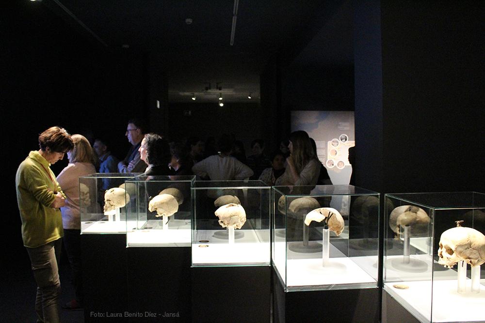 Visitantes contemplando las cabezas enclavadas de Puig Castellar (Santa Coloma de Gramanet, Barcelona) y Puig de Sant Andreu (Ullastret, Girona). Foto: Laura Benito Díez - Jansá