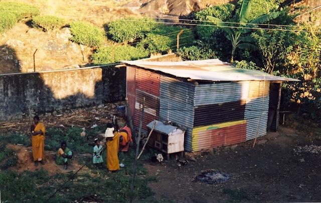 Munnar i Indien