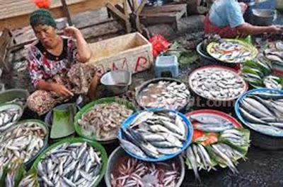 Harga Ikan Segar Di Ambon Mahal
