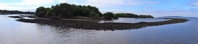 Cedar Key National Wildlife Refuge, Florida USA