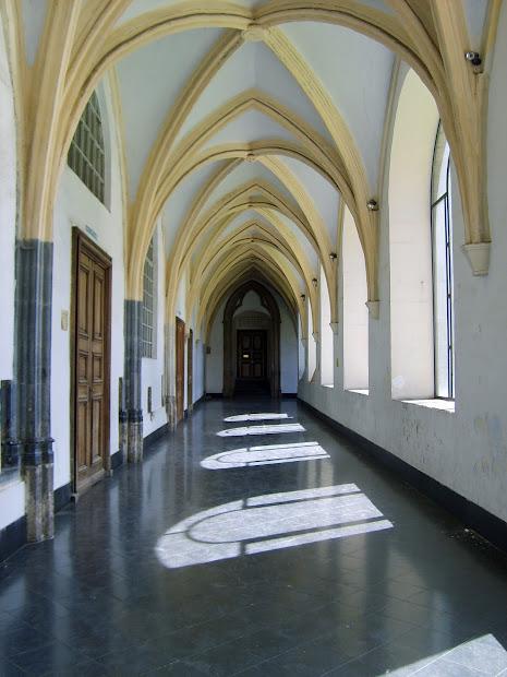 Architecture Student Arches