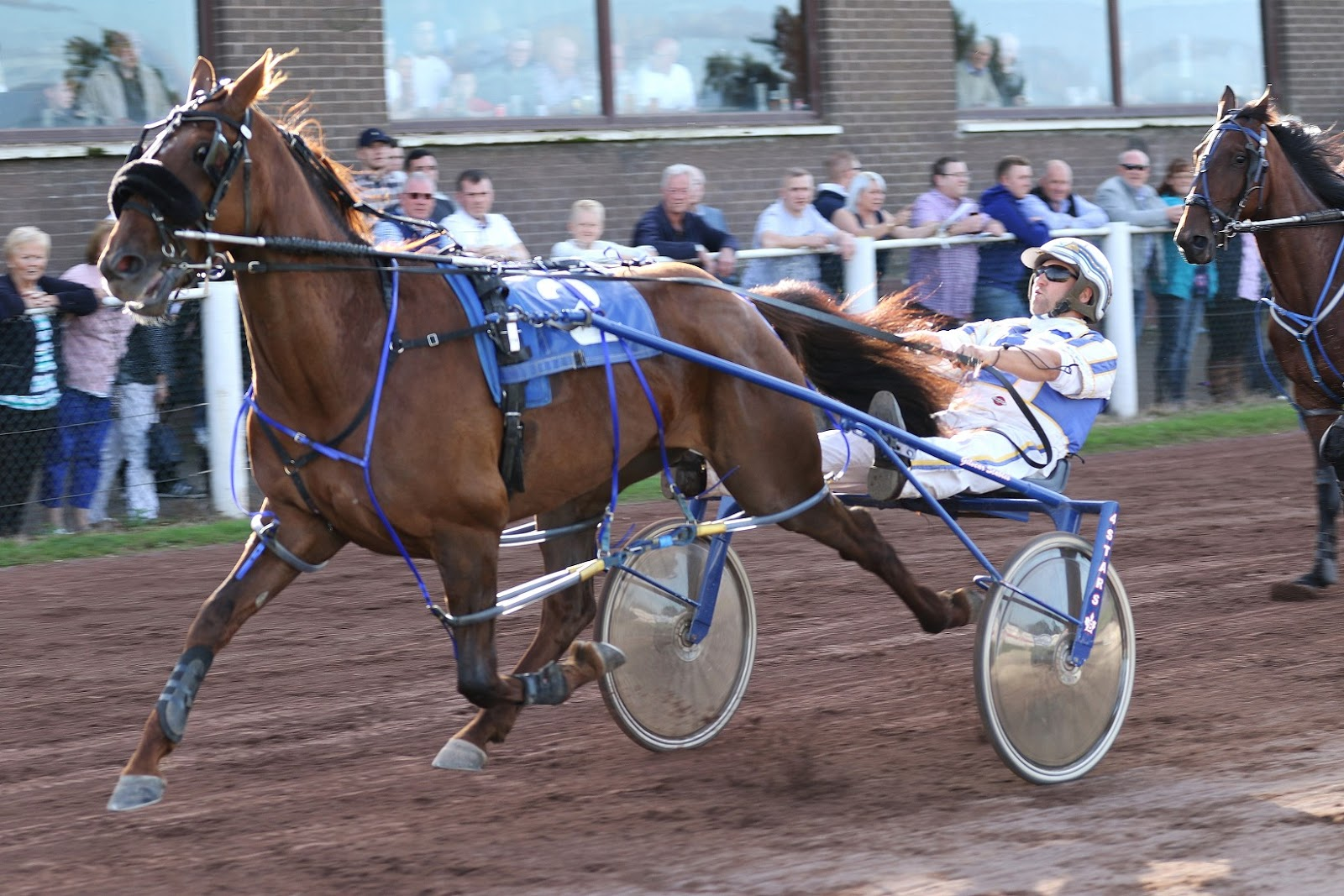 Harness Racing in the UK: September 2016
