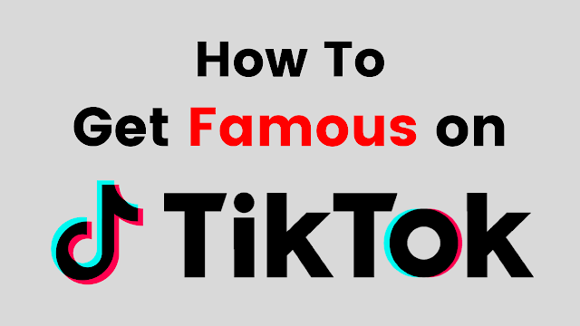 "How to Get Famous on TikTok? ""WIKIHOW HIDE THIS"""